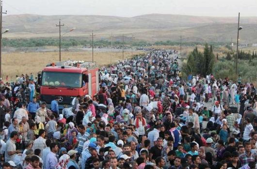 refugees_syrian